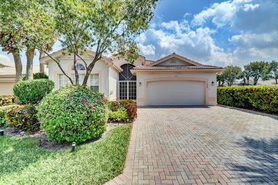 Boynton Beach Single Family Home For Sale: 11980 Manzano Avenue