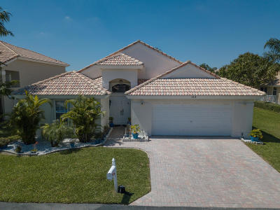 Palm Beach Single Family Home For Sale: 113 Citrus Park Circle