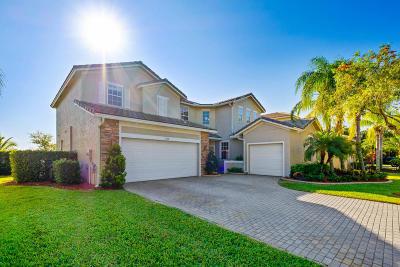 Stonehaven Pud Single Family Home For Sale: 1362 Pebble Ridge Lane