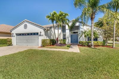 Greenacres Single Family Home For Sale: 2520 Egret Lake Drive