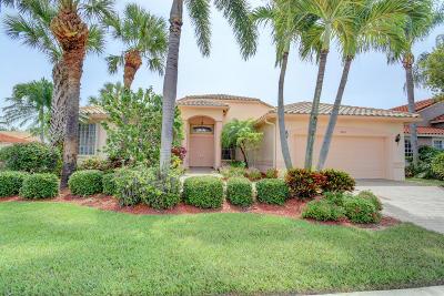 Boynton Beach Single Family Home For Sale: 9024 Padova Drive