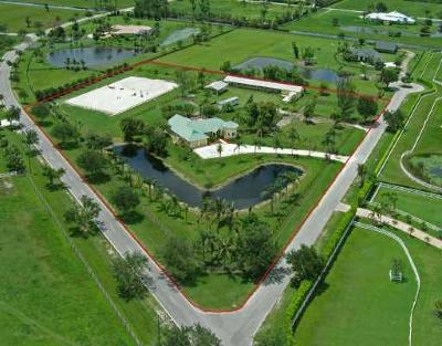 Palm Beach Point Single Family Home Contingent: 4491 Palm Breeze Trail