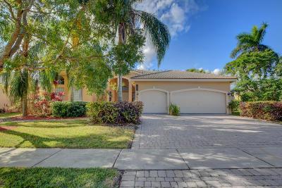 Boca Raton Single Family Home For Sale: 9786 Parkview Ave