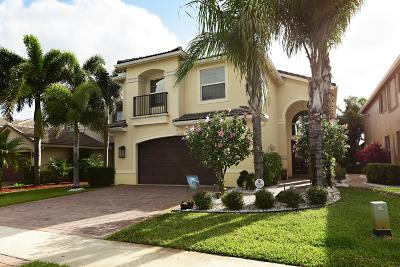 Boynton Beach Single Family Home For Sale: 11630 Ponywalk Trail