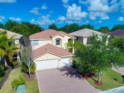 Boynton Beach Single Family Home For Sale: 11426 Millpond Greens Drive