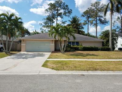 Royal Palm Beach Single Family Home For Sale: 197 NW Sunflower Circle