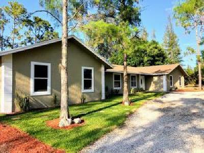 Loxahatchee Single Family Home For Sale: 16031 E Downers Drive