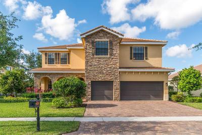 Boynton Beach Single Family Home For Sale: 9782 Equus Circle