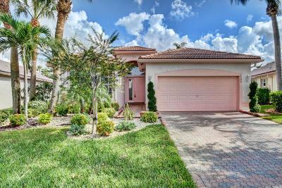 Boynton Beach Single Family Home For Sale: 6599 Malta Drive