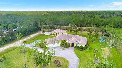 Palm Beach Gardens FL Single Family Home For Sale: $1,195,000