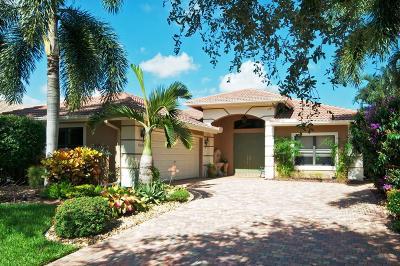 Boynton Beach Single Family Home For Sale: 11025 Via Sorrento