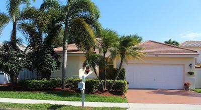 Boynton Beach Single Family Home For Sale: 196 Orange Drive