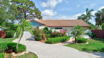 Boca Raton Single Family Home For Sale: 1113 SW 17th Street