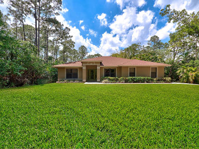 Jupiter Single Family Home For Sale: 18647 126th Terrace
