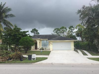 Royal Palm Beach Single Family Home For Sale: 146 Sparrow Drive