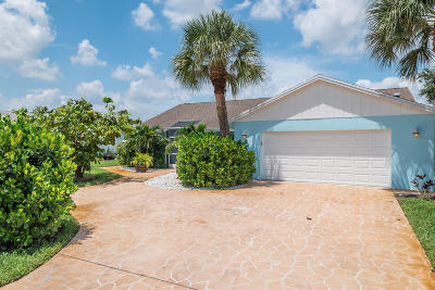Palm Beach Gardens Single Family Home For Sale: 14297 Evelyn Drive