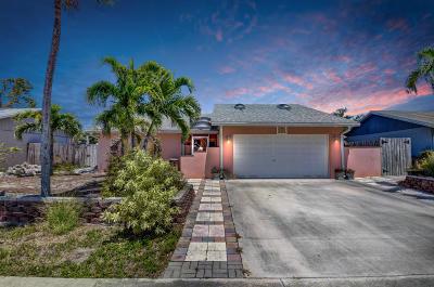 Boca Raton Single Family Home For Sale: 9417 Affirmed Lane