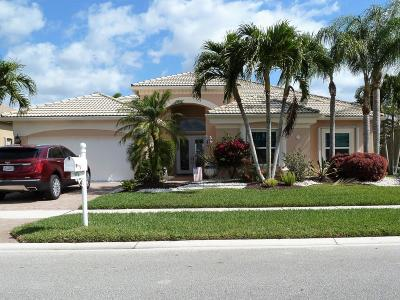 Lake Worth Single Family Home For Sale: 9576 San Vittore Street