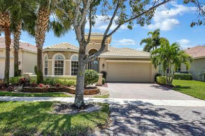 Wellington Single Family Home For Sale: 9230 Via Classico E