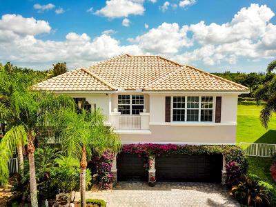 Boynton Beach Single Family Home For Sale: 8771 Cobblestone Preserve Court