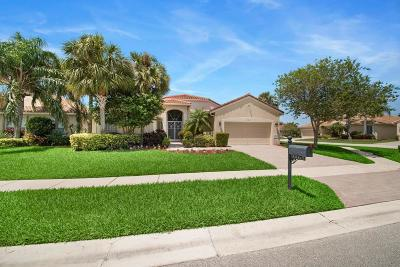 Boynton Beach Single Family Home For Sale: 9065 Taverna Way