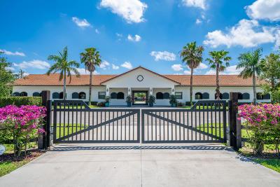 Wellington Single Family Home For Sale: 14389 Draft Horse Lane