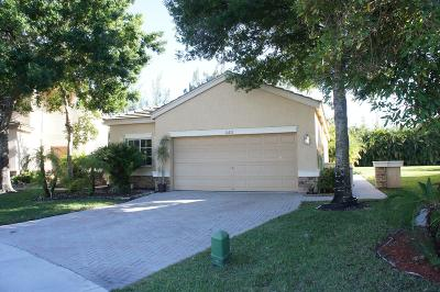 Lake Worth Single Family Home For Sale: 10276 Little Mustang Way