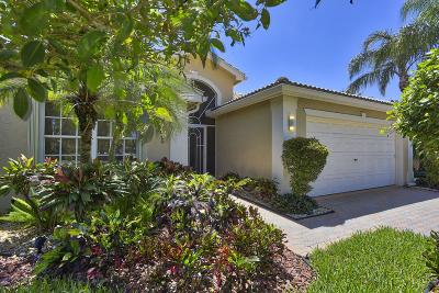 Boynton Beach Single Family Home For Sale: 7430 Kahana Drive