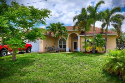 Port Saint Lucie Single Family Home For Sale: 3133 SW Dimattia Street SW