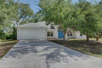 Port Saint Lucie Single Family Home For Sale: 1625 SW Abingdon Avenue