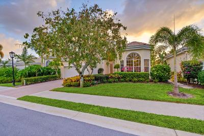 Palm Beach Gardens Single Family Home For Sale: 169 Windward Drive
