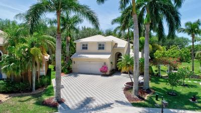 Boca Raton Single Family Home For Sale: 11371 Sea Grass Circle