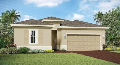 Fort Pierce Single Family Home For Sale: 4216 Birkdale Drive