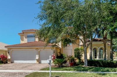 Lake Worth Single Family Home For Sale: 9927 Via Bernini