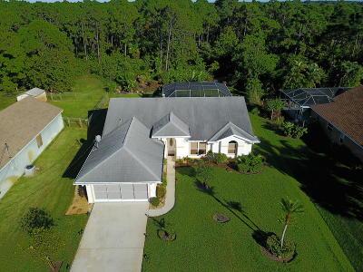 Port Saint Lucie, Saint Lucie West Single Family Home For Sale: 4573 SW Daemon Street