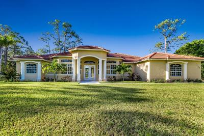 Loxahatchee Single Family Home For Sale: 14618 64th Court