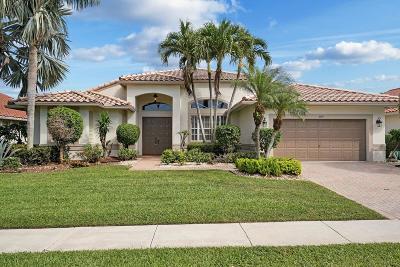 Boynton Beach Single Family Home For Sale: 6895 W Liseron