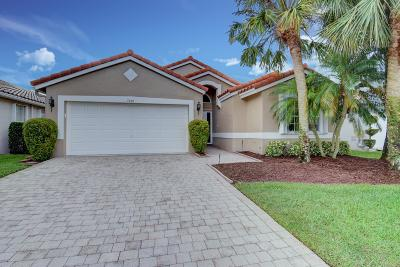 Boynton Beach Single Family Home For Sale: 7406 Haviland Circle