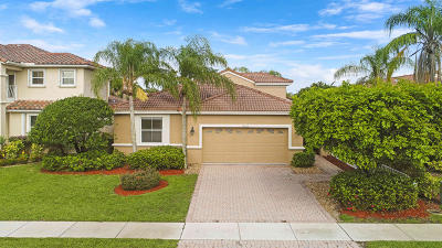Boca Raton Single Family Home For Sale: 18705 Sea Turtle Lane