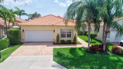 Boca Raton Single Family Home For Sale: 7110 NW Turtle Walk