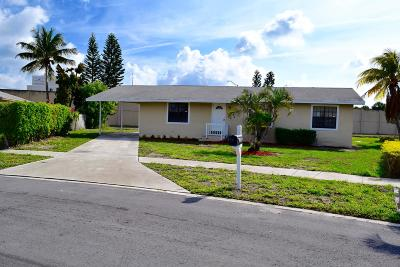 West Palm Beach Single Family Home For Sale: 325 Elaine Circle E