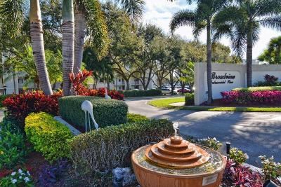 Tequesta Condo Contingent: 100 Intracoastal Place #208