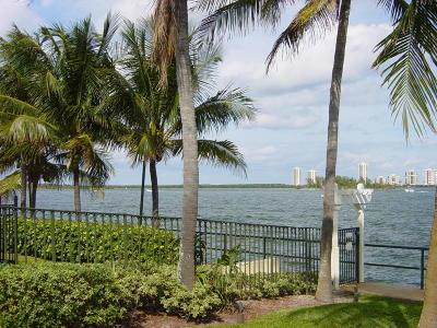 Condo For Sale: 1035 Lake Shore Drive #104