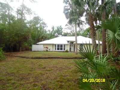 Jupiter Single Family Home For Sale: 17767 Mellen Lane