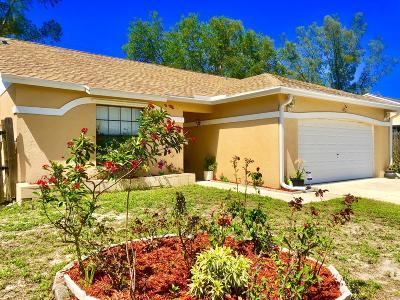 Royal Palm Beach Single Family Home Contingent: 10933 Dalmany Way