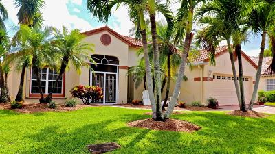 Greenacres Single Family Home For Sale: 104 Egret Circle