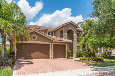 Boca Raton Single Family Home For Sale: 19347 Skyridge Circle