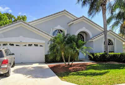 Palm Beach Gardens Single Family Home For Sale: 306 Timberwood Court