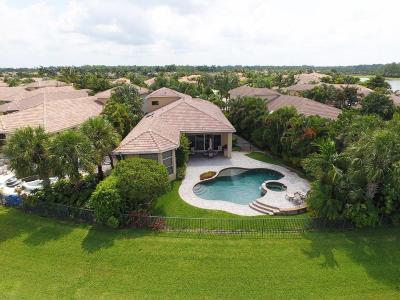 Palm Beach Gardens Single Family Home For Sale: 248 Porto Vecchio Way