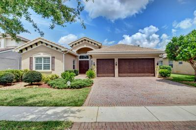 Boynton Beach Single Family Home For Sale: 11952 Fox Hill Circle